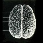 m033p025_m033p025-1_FI