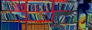 ספריה ינקי